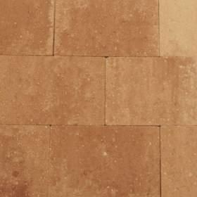 Terrassteen+ 20x30x4cm marrone